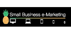 Small Business e-Marketing